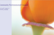 Community Environmental Council Report